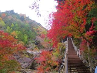 大柳川渓谷.JPG